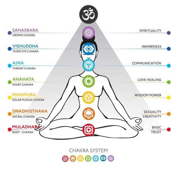The Chakras And Science